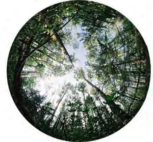 sphericalPhoto